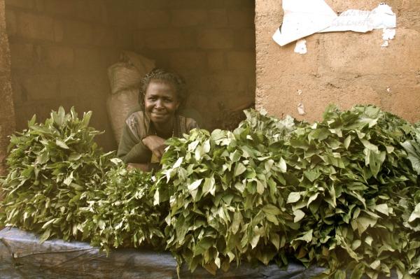 Herbs! So many delicious herbs! Markets of Uganda. Edwina Storie